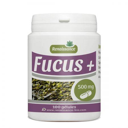 fucus-complement-alimentaire-coupe-faim-a3700216253371