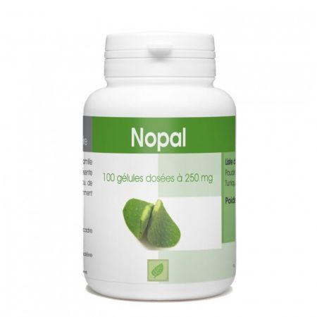 nopal-complement-alimentaire-minceur-gph782-thj100