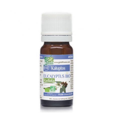 eucalyptus-radiata-bio-huile-essentielle-chemotypee-gph784-mpo010